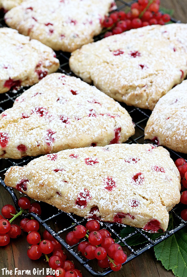 These Redcurrant Scones make a perfect breakfast, brunch, or an afternoon coffee break! They are so simple to make but delicious treat that is very much enjoyed by our family. Light, moist, and fluffy, every bite melt in your mouth.