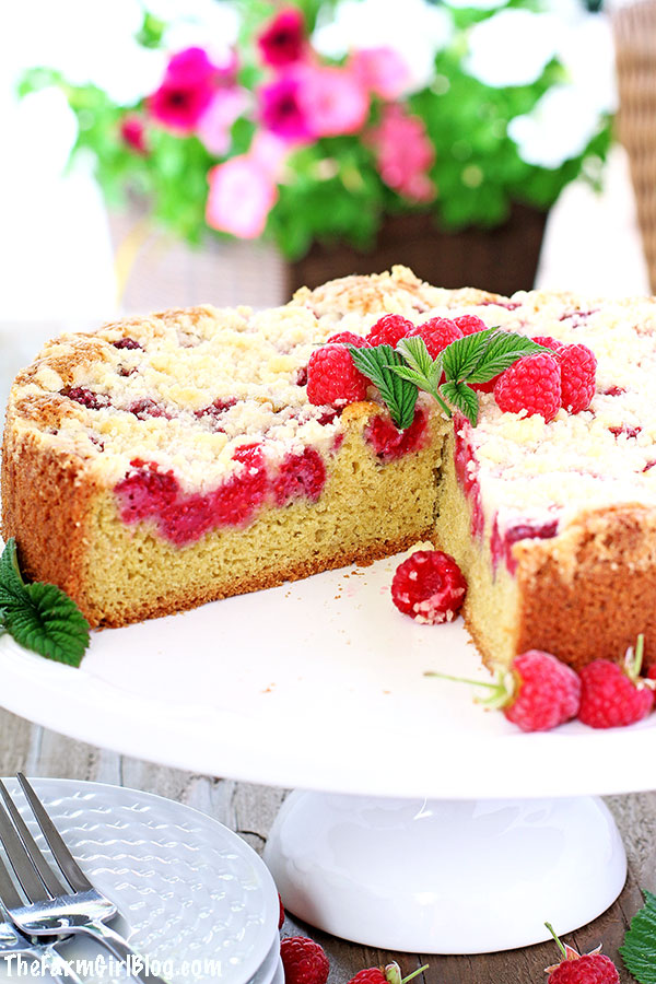 Raspberry lovers, rejoice! This incredible Raspberry Streusel Coffee Cake Recipe is the easiest cake you can ever make! Soft and moist cake sponge, loaded with homegrown juicy raspberries, and topped with crunchy buttery streusel taste just amazing!
