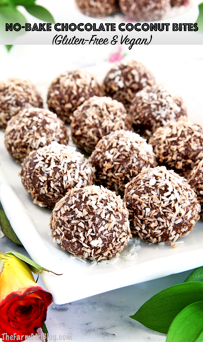 This Vegan & Gluten-Free Chocolate Coconut Bites (Video) recipe is amazingly easy to make and super handy to have on the go. Toss a few ingredients together and in no time, you'll have an absolutely delicious dessert or a snack that will give you a boost when needed and satisfy your chocolate cravings all at once, no doubt!