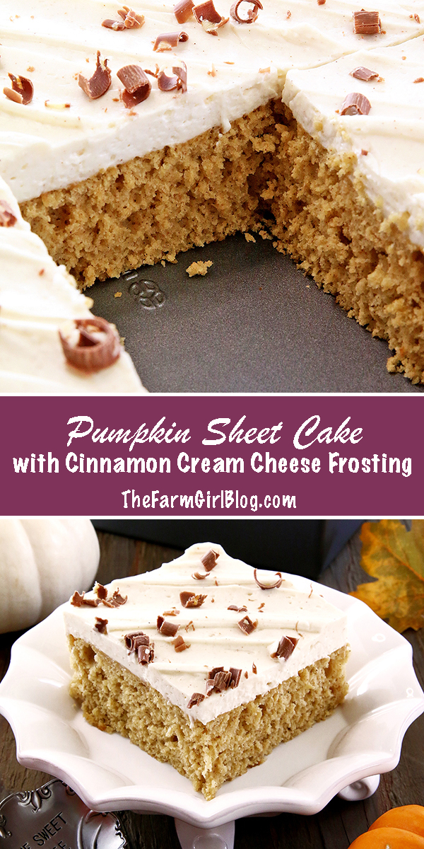 This Pumpkin Sheet Cake with Cinnamon Cream Cheese Frosting is irresistibly delicious. It's super soft and moist sponge has an incredible pumpkin flavor. Topped with a sweet and tangy cinnamon cream cheese frosting just makes this cake shine and attract pumpkin lovers!